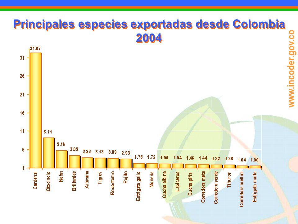 Principales especies exportadas desde Colombia