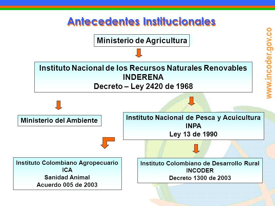 Antecedentes Institucionales