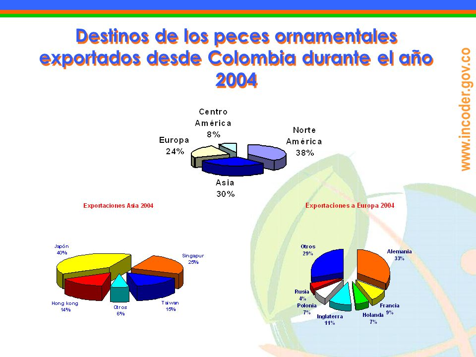 Destinos de los peces ornamentales exportados desde Colombia durante el año 2004