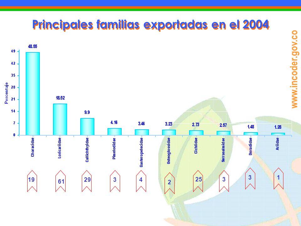 Principales familias exportadas en el 2004