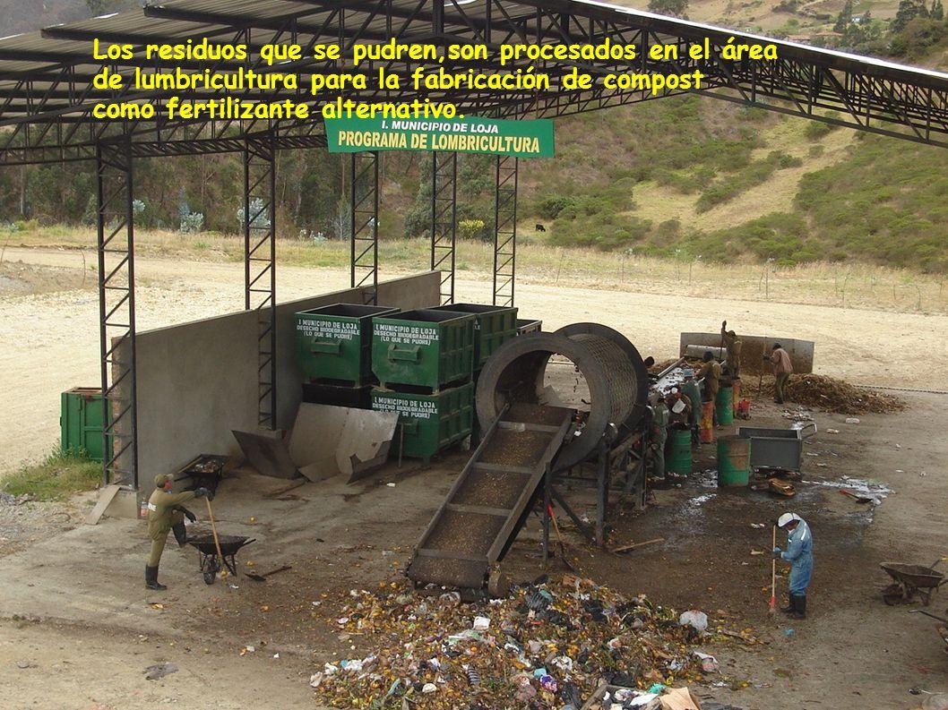 Los residuos que se pudren,son procesados en el área