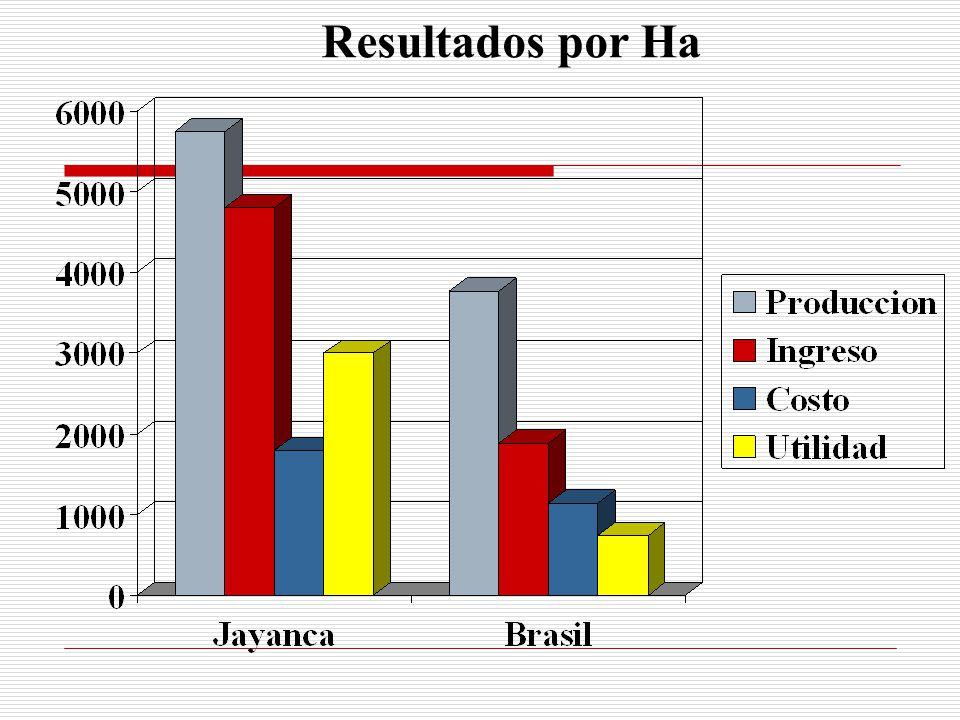 Resultados por Ha