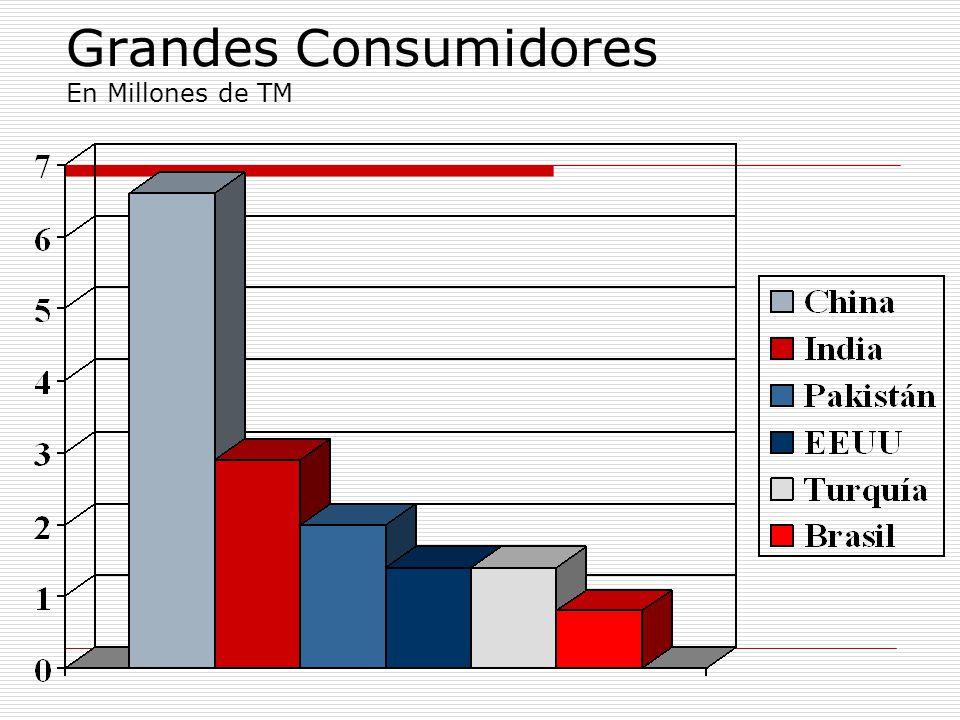 Grandes Consumidores En Millones de TM