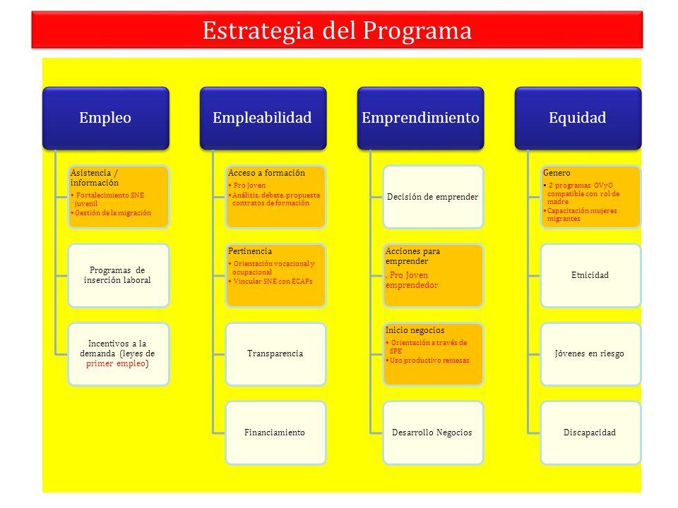 Estrategia del Programa