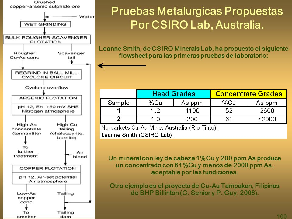 Pruebas Metalurgicas Propuestas Por CSIRO Lab, Australia.