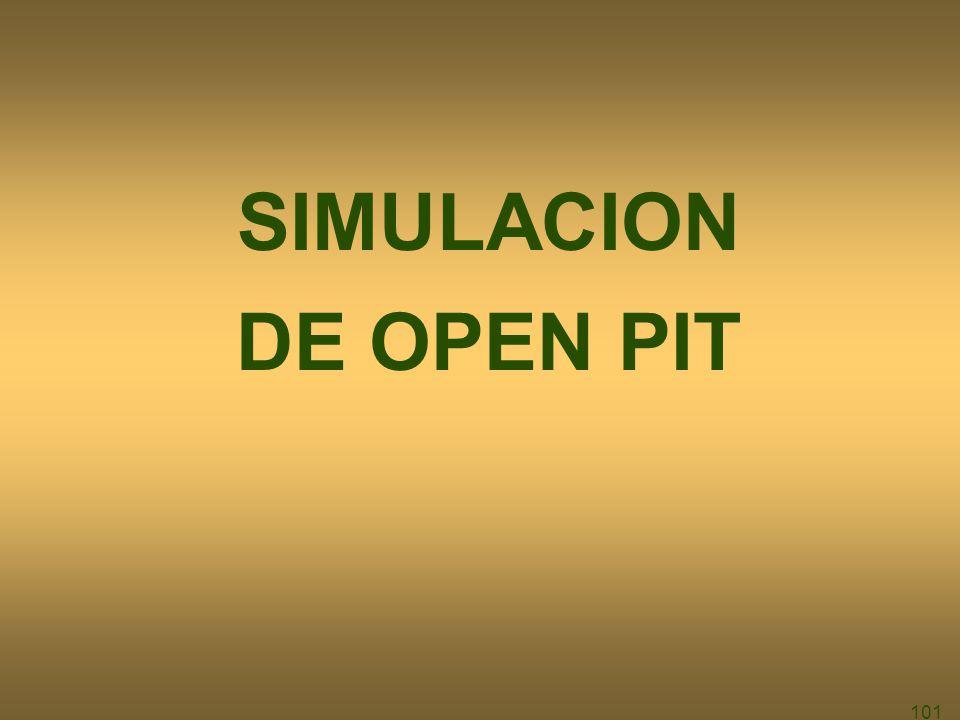 SIMULACION DE OPEN PIT 101