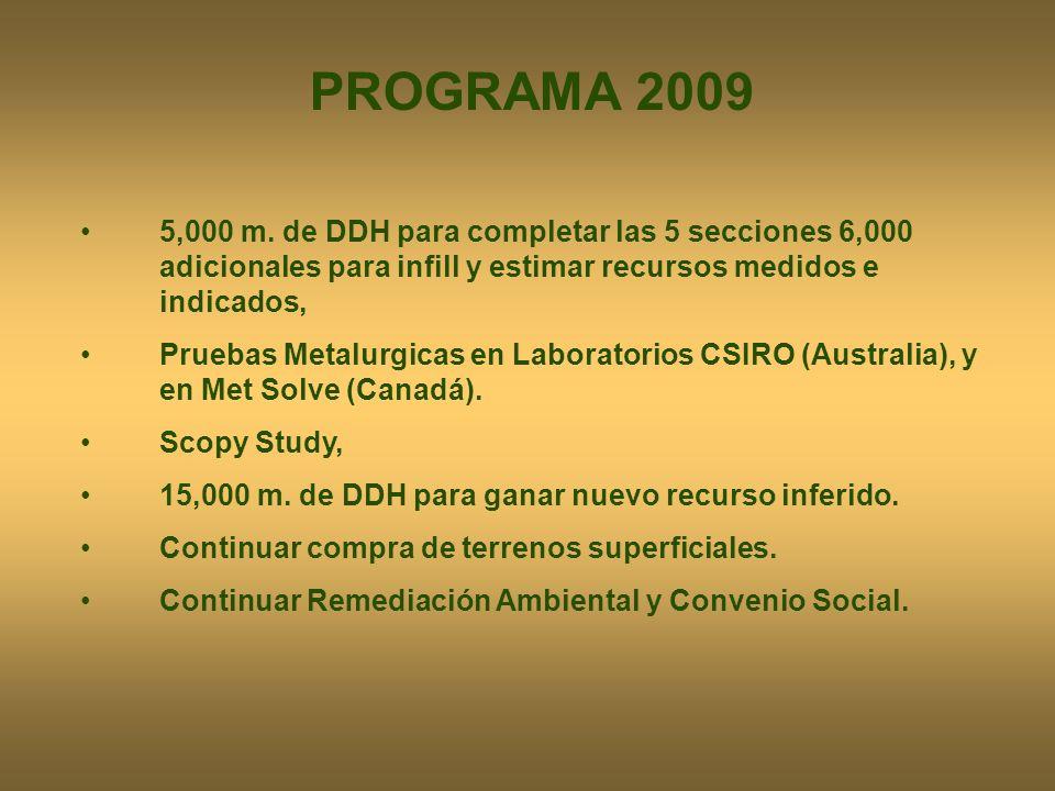 PROGRAMA 2009 5,000 m. de DDH para completar las 5 secciones 6,000 adicionales para infill y estimar recursos medidos e indicados,
