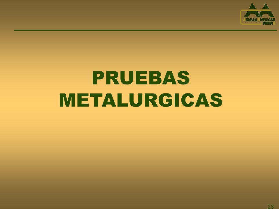 PRUEBAS METALURGICAS 23