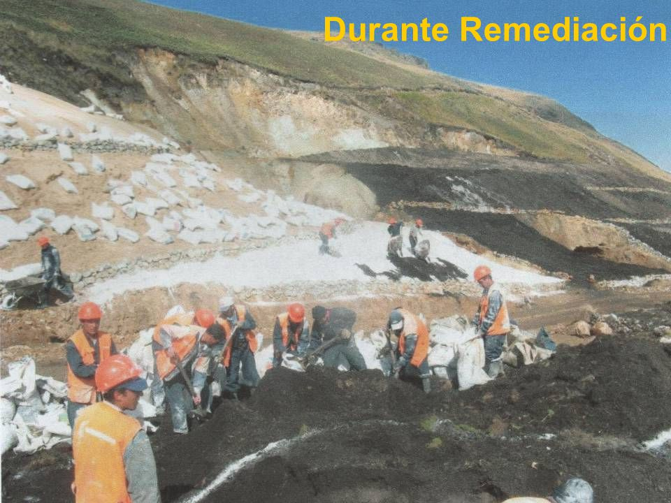 Durante Remediación 56 56