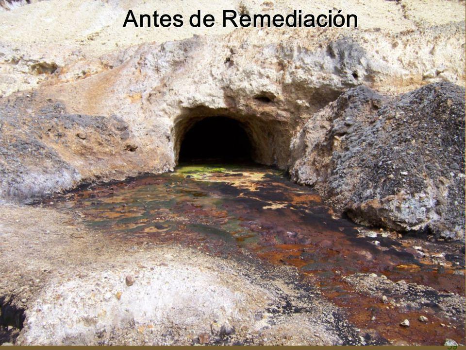 Antes de Remediación 59 59