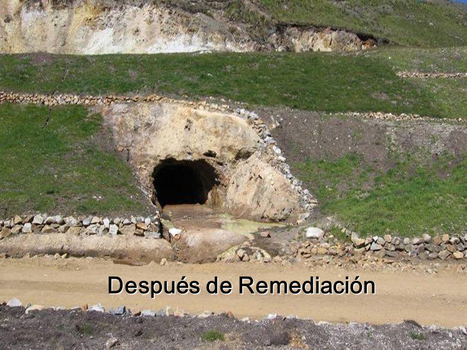 Después de Remediación