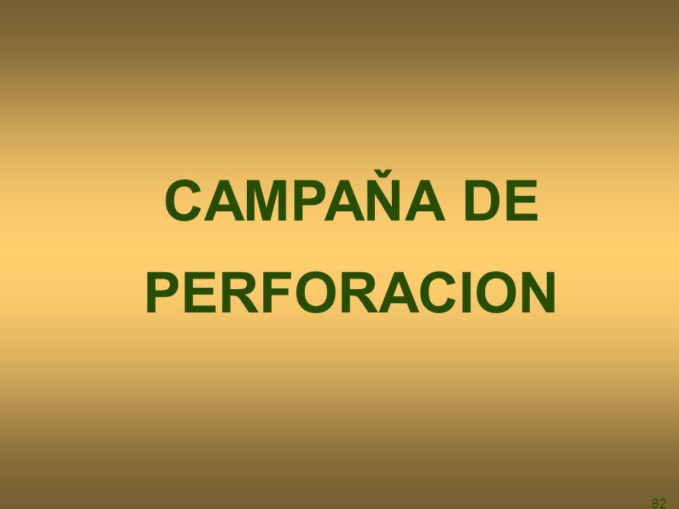 CAMPAŇA DE PERFORACION