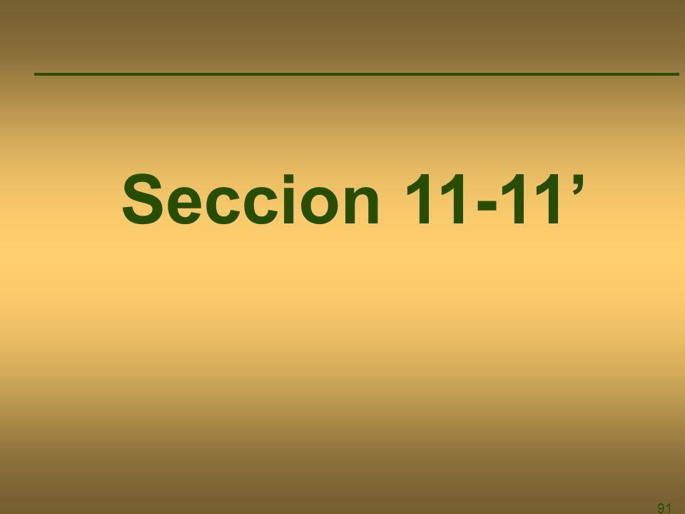 Seccion 11-11' 91
