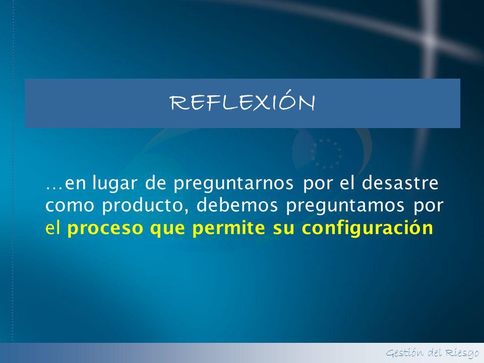 REFLEXIÓN …en lugar de preguntarnos por el desastre como producto, debemos preguntamos por el proceso que permite su configuración.