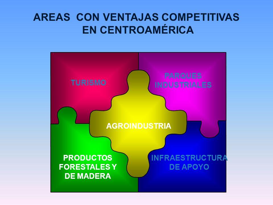 AREAS CON VENTAJAS COMPETITIVAS