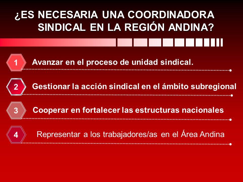 ¿ES NECESARIA UNA COORDINADORA SINDICAL EN LA REGIÓN ANDINA