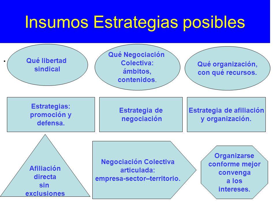Insumos Estrategias posibles
