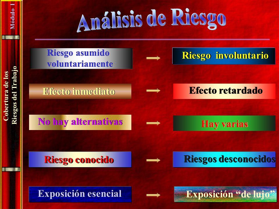 Análisis de Riesgo Riesgo involuntario Efecto retardado