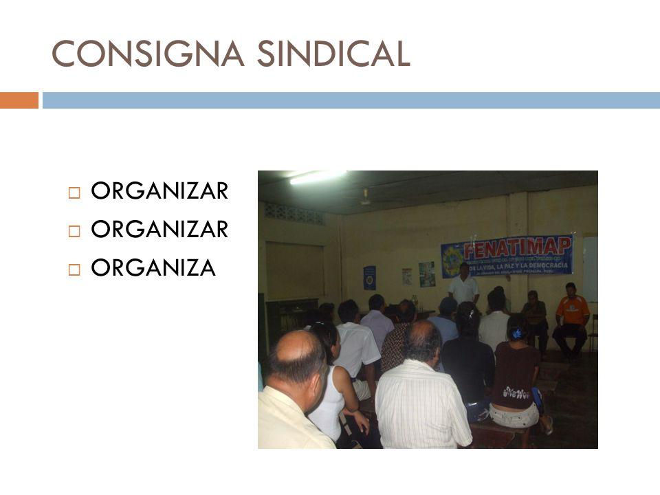 CONSIGNA SINDICAL ORGANIZAR ORGANIZA