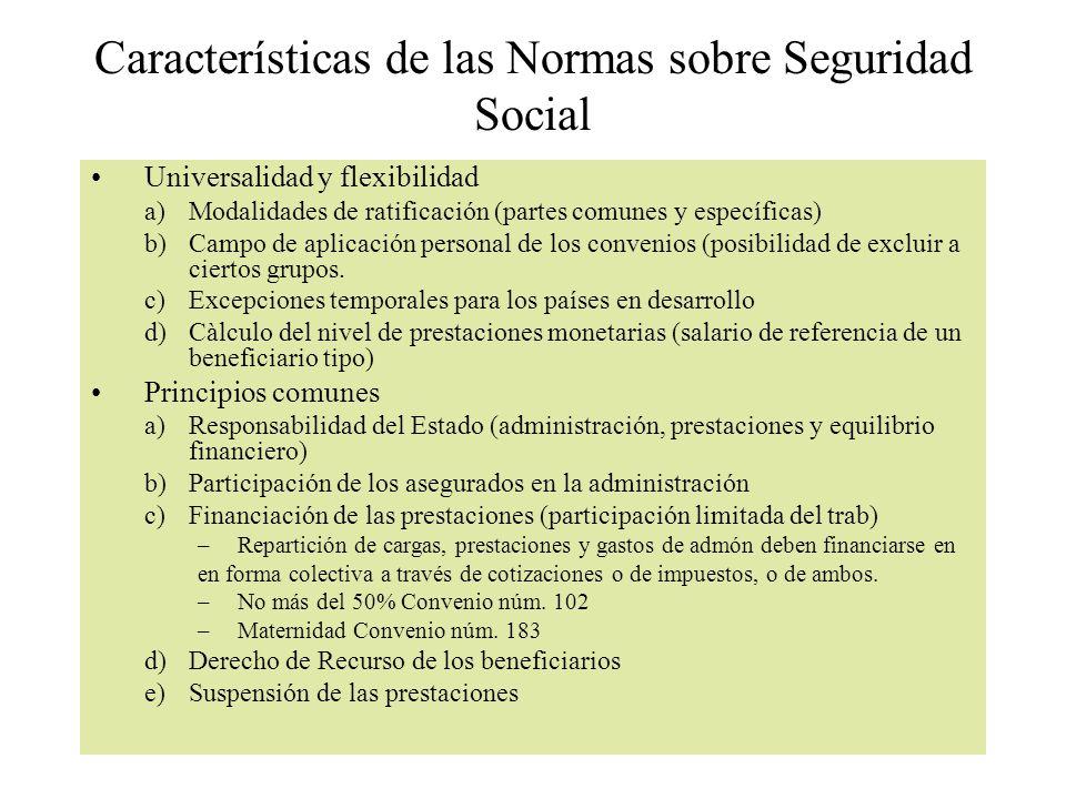 Características de las Normas sobre Seguridad Social