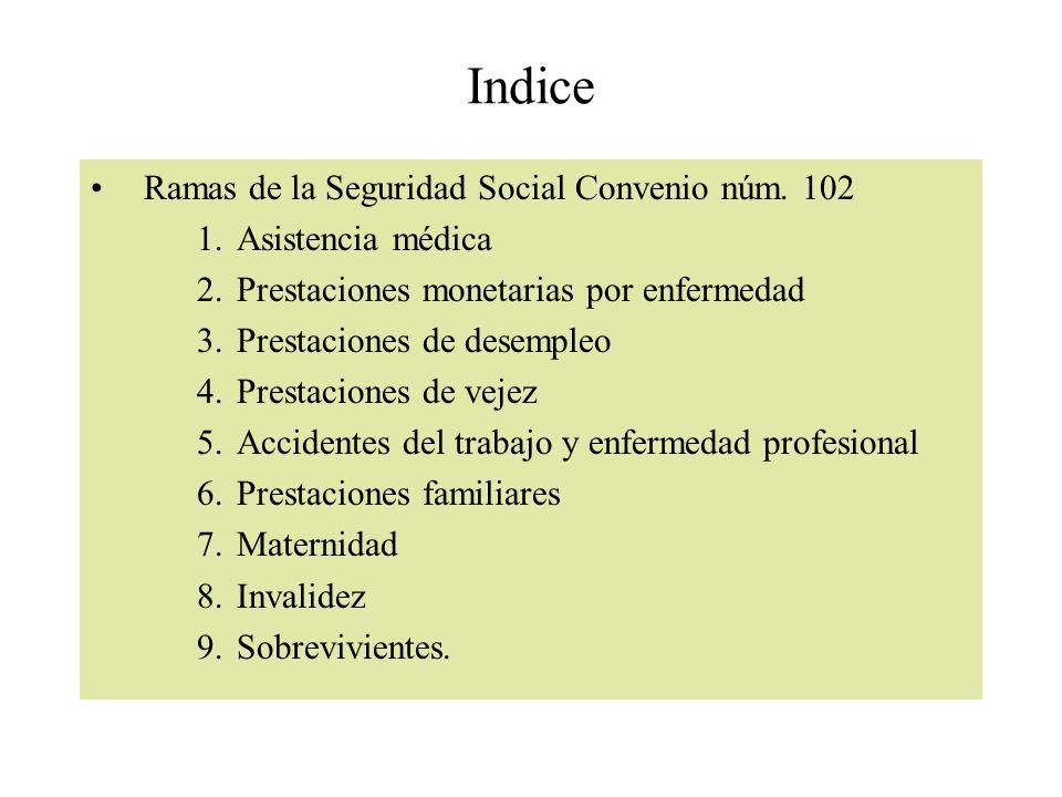 Indice Ramas de la Seguridad Social Convenio núm. 102