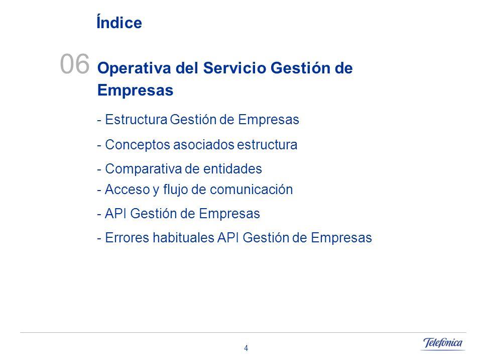 06 Operativa del Servicio Gestión de Empresas