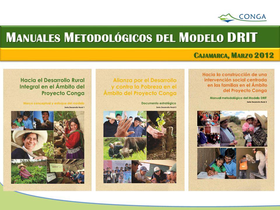 Manuales Metodológicos del Modelo DRIT