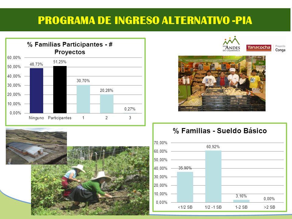 PROGRAMA DE INGRESO ALTERNATIVO -PIA