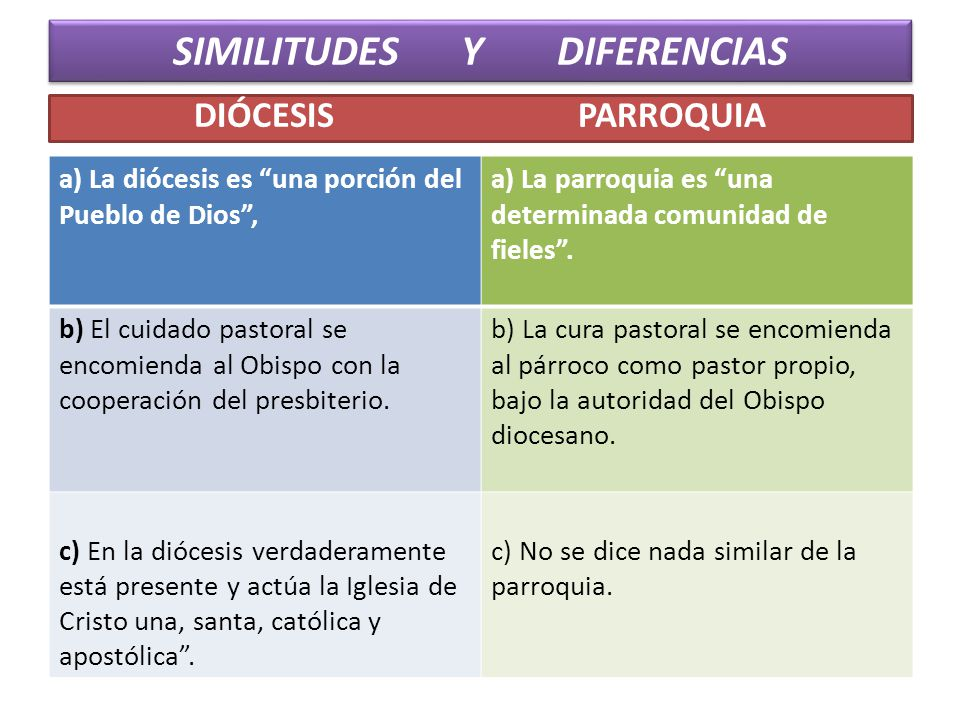 SIMILITUDES Y DIFERENCIAS