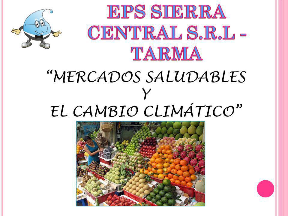EPS SIERRA CENTRAL S.R.L - TARMA