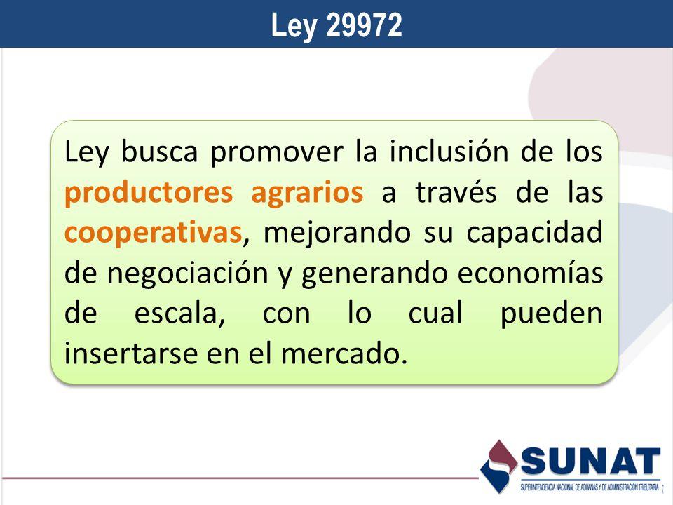 Ley 29972