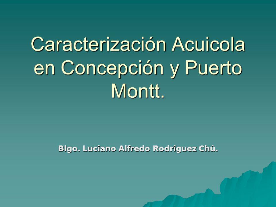 Caracterización Acuicola en Concepción y Puerto Montt.