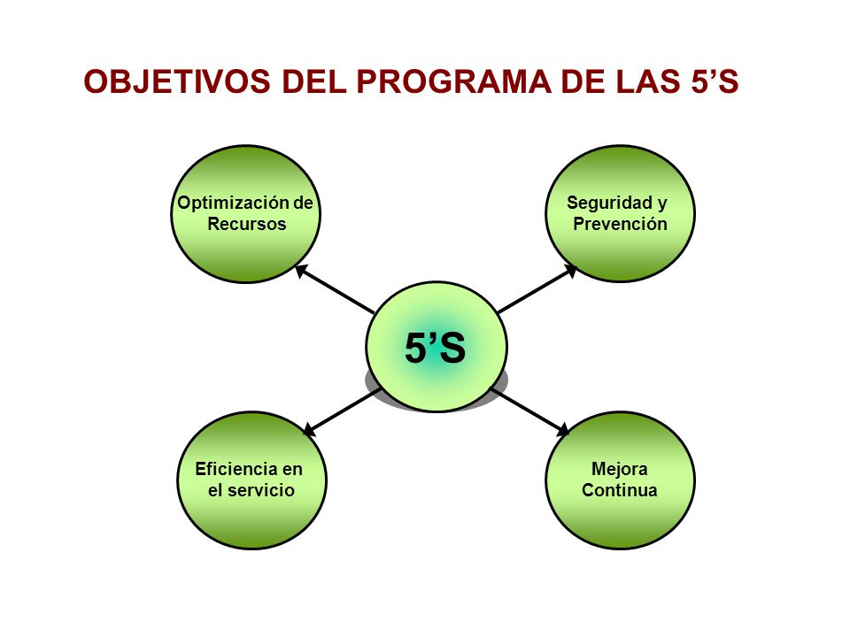 OBJETIVOS DEL PROGRAMA DE LAS 5'S