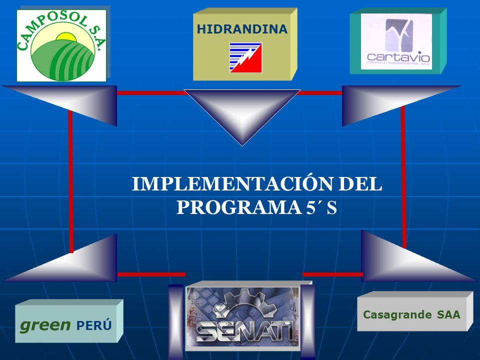 IMPLEMENTACIÓN DEL PROGRAMA 5´ S