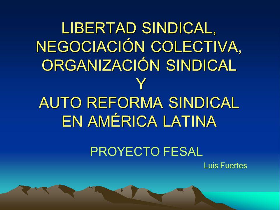 PROYECTO FESAL Luis Fuertes