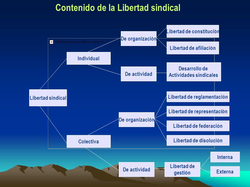 Contenido de la Libertad sindical