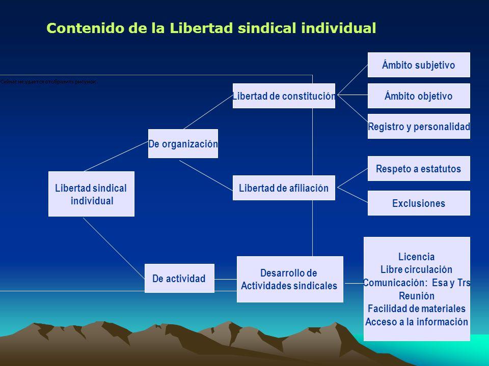 Contenido de la Libertad sindical individual