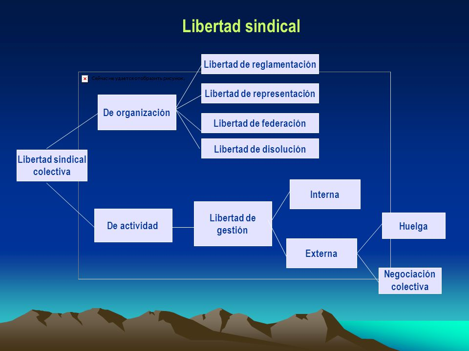 Libertad sindical Libertad de reglamentación