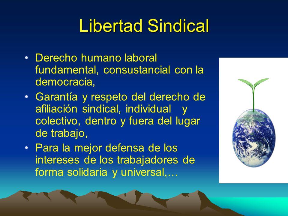 Libertad Sindical Derecho humano laboral fundamental, consustancial con la democracia,
