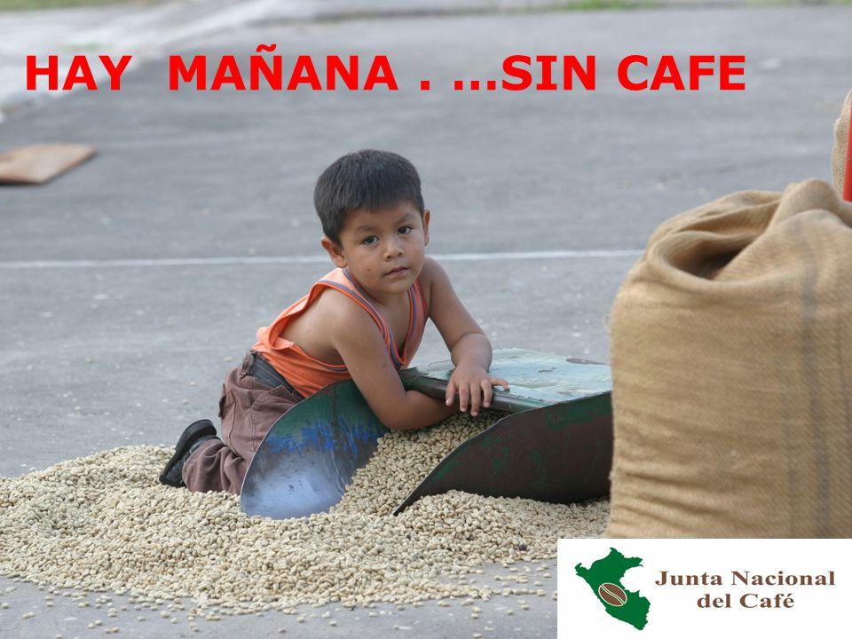 NO HAY MAÑANA . …SIN CAFE