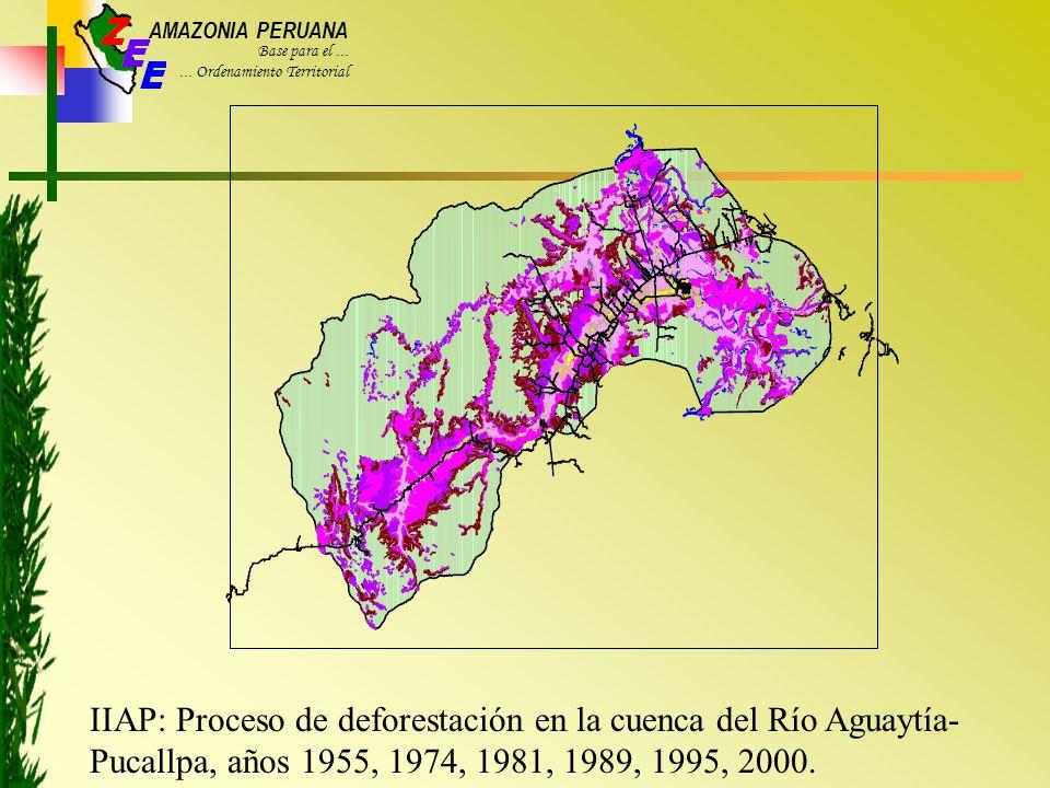 IIAP: Proceso de deforestación en la cuenca del Río Aguaytía-Pucallpa, años 1955, 1974, 1981, 1989, 1995, 2000.