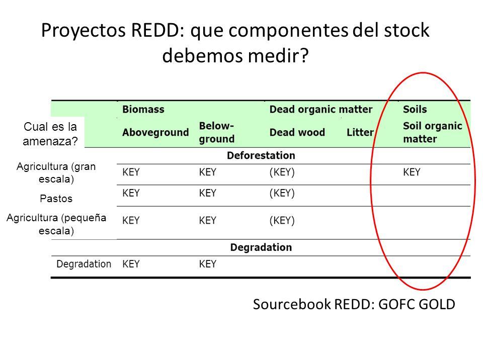 Proyectos REDD: que componentes del stock debemos medir