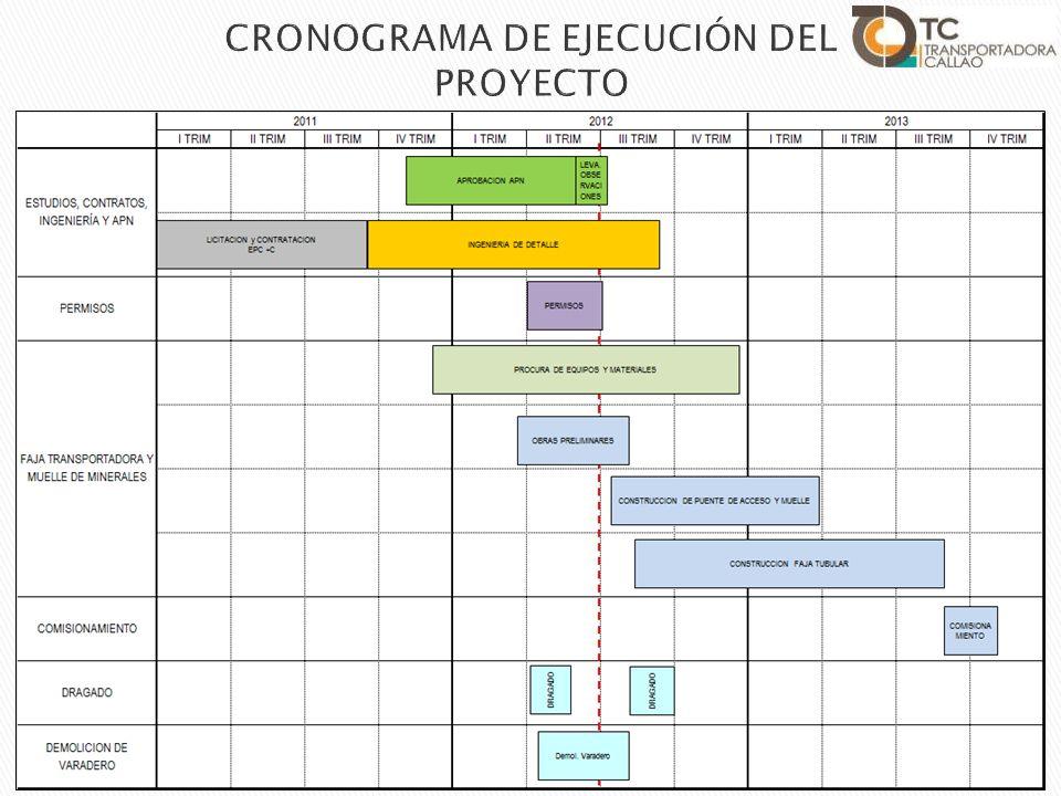 CRONOGRAMA DE EJECUCIÓN DEL PROYECTO