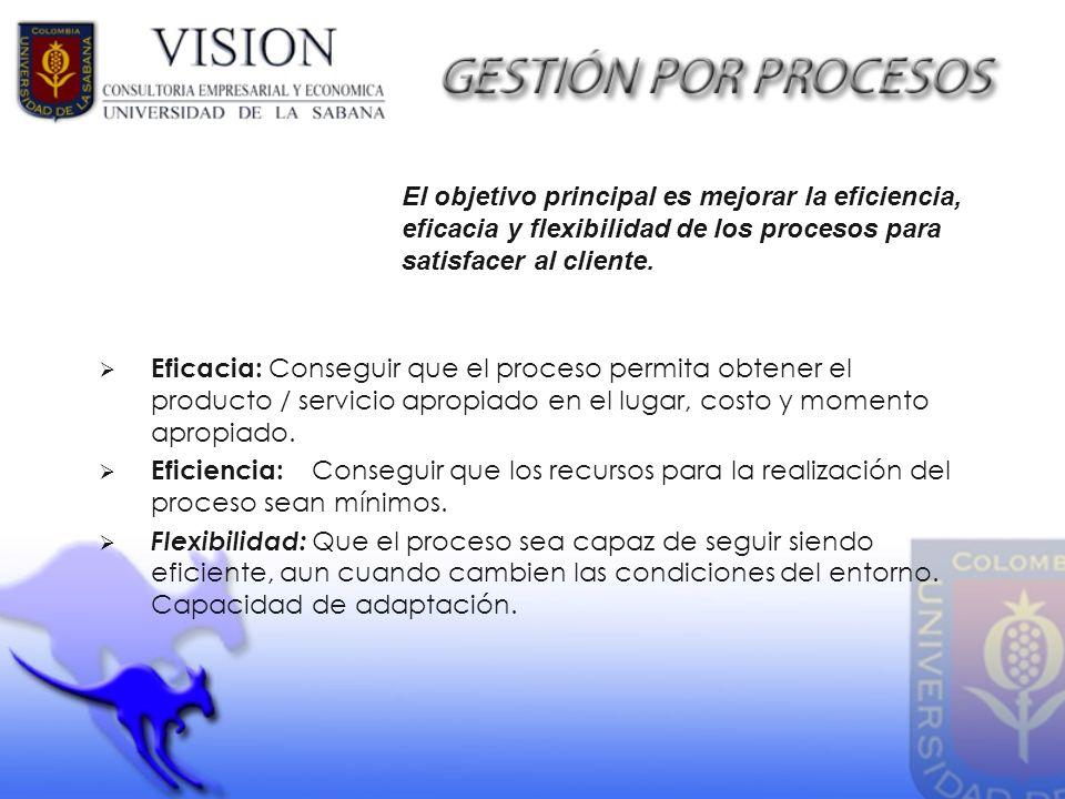 El objetivo principal es mejorar la eficiencia, eficacia y flexibilidad de los procesos para satisfacer al cliente.