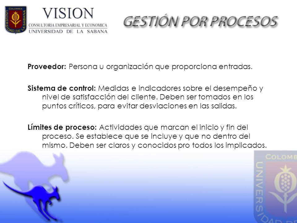 Proveedor: Persona u organización que proporciona entradas.