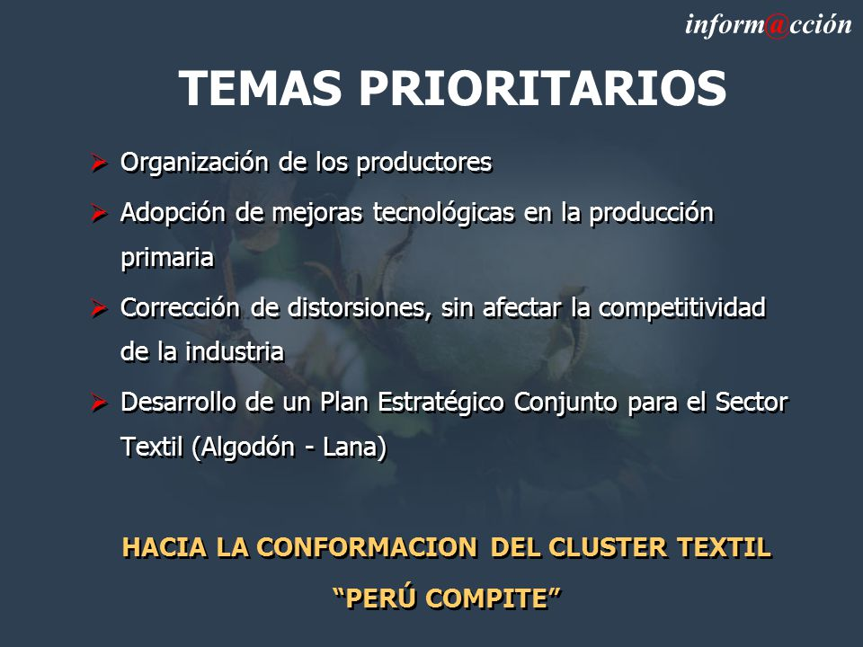 HACIA LA CONFORMACION DEL CLUSTER TEXTIL