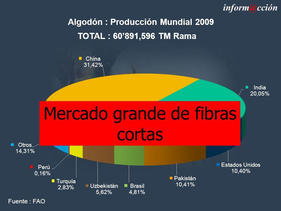 Mercado grande de fibras