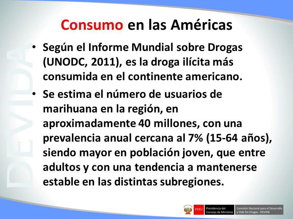 Consumo en las Américas