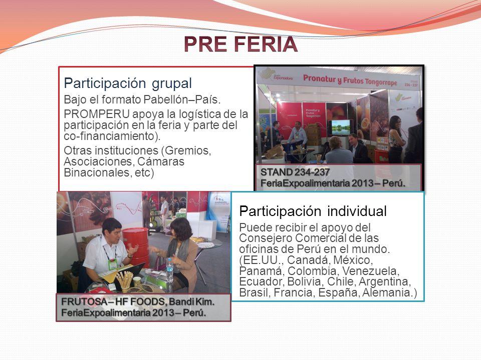 PRE FERIA Participación grupal Participación individual