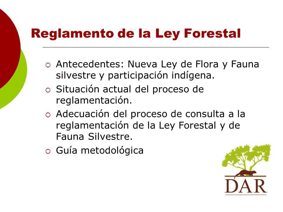 Reglamento de la Ley Forestal
